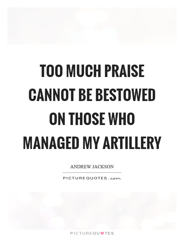 Too much praise cannot be bestowed on those who managed my artillery Picture Quote #1