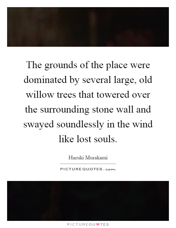 The grounds of the place were dominated by several large, old willow trees that towered over the surrounding stone wall and swayed soundlessly in the wind like lost souls Picture Quote #1