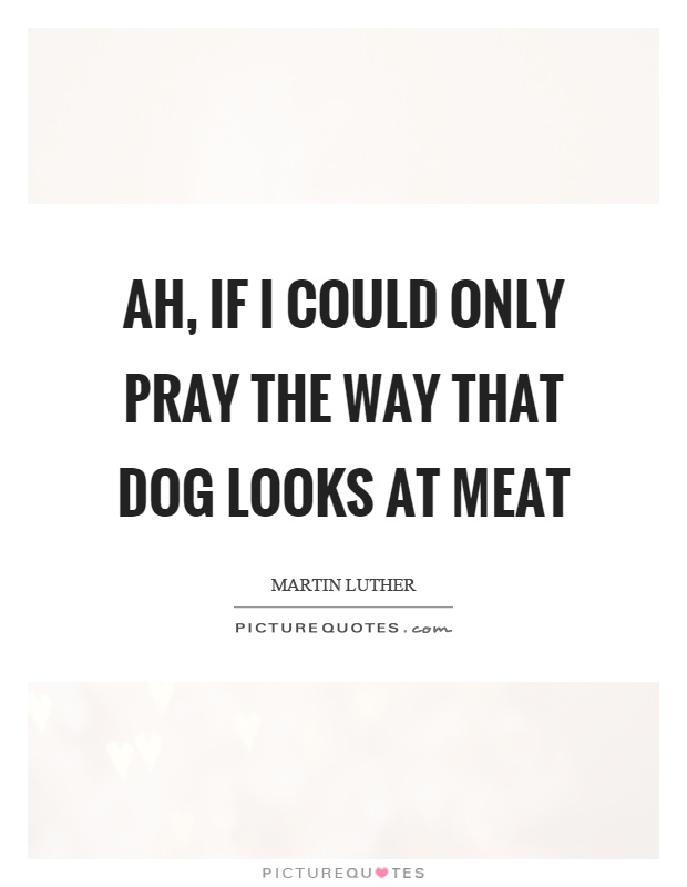 Ah, if I could only pray the way that dog looks at meat Picture Quote #1