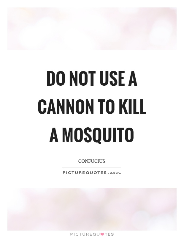 Do not use a cannon to kill a mosquito Picture Quote #1