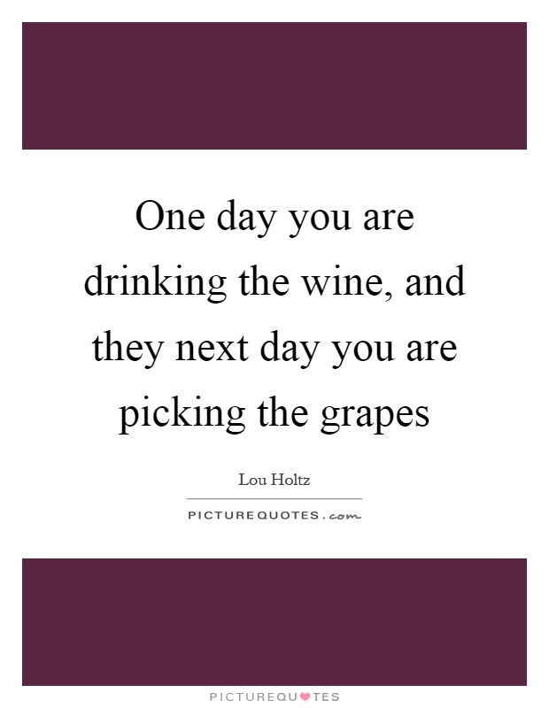 One day you are drinking the wine, and they next day you are picking the grapes Picture Quote #1