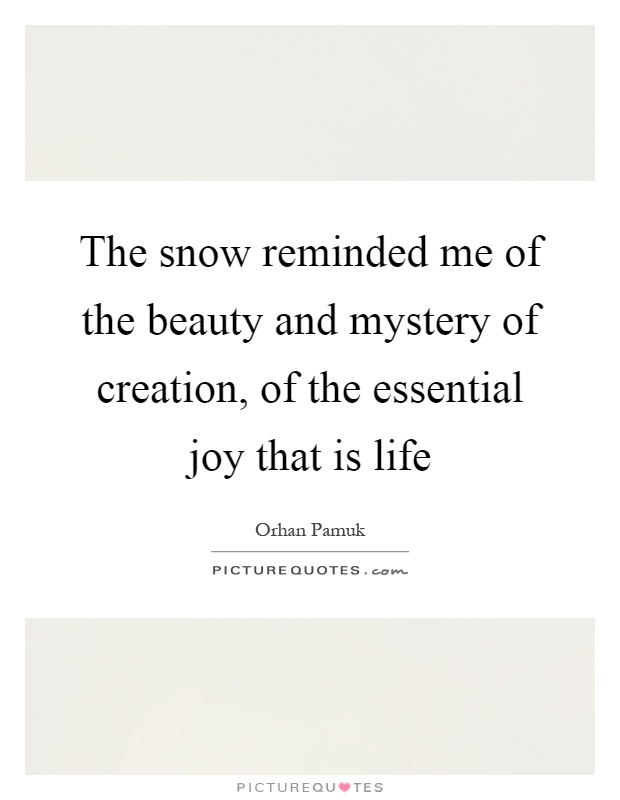 The snow reminded me of the beauty and mystery of creation, of the essential joy that is life Picture Quote #1