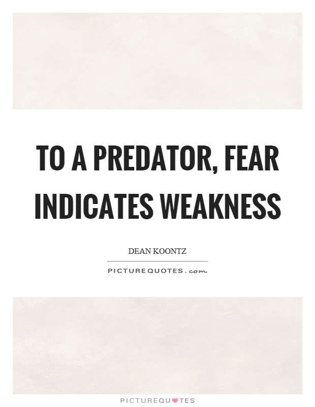 To a predator, fear indicates weakness Picture Quote #1