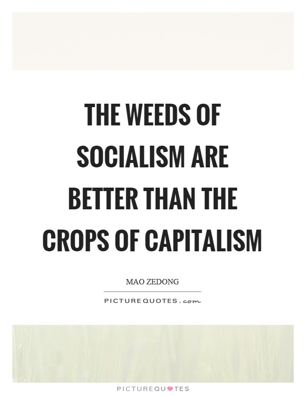 The weeds of socialism are better than the crops of capitalism Picture Quote #1