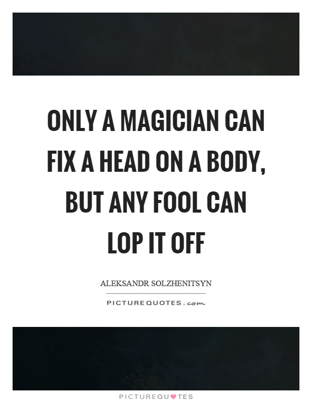 Only a magician can fix a head on a body, but any fool can lop it off Picture Quote #1