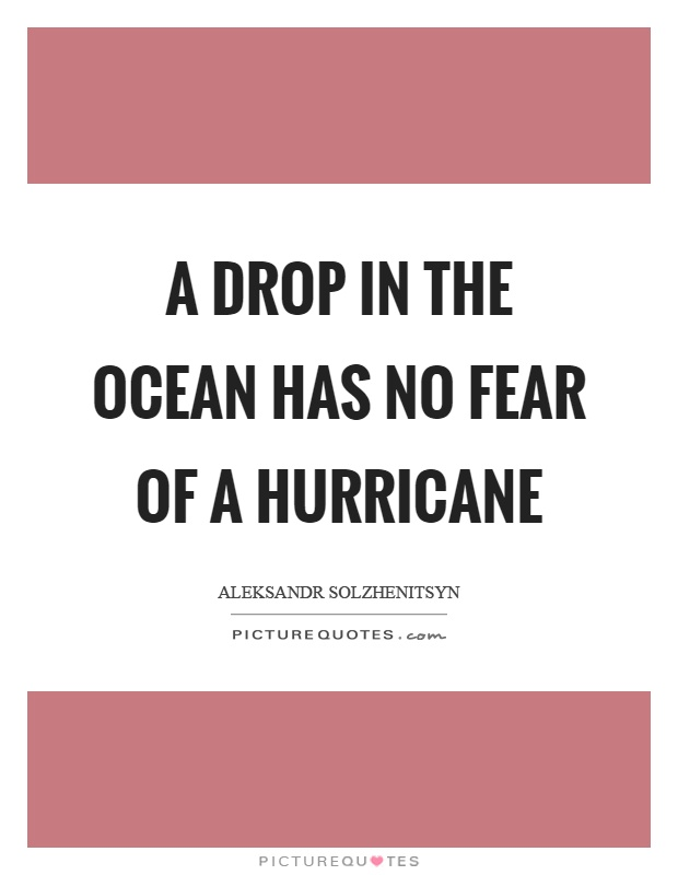 A drop in the ocean has no fear of a hurricane Picture Quote #1