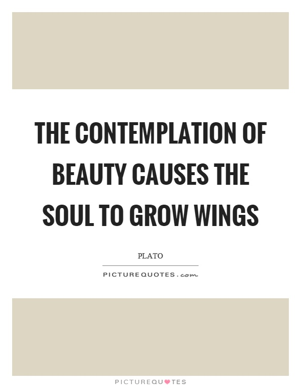 The contemplation of beauty causes the soul to grow wings Picture Quote #1