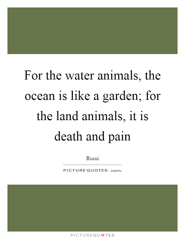 For the water animals, the ocean is like a garden; for the land animals, it is death and pain Picture Quote #1