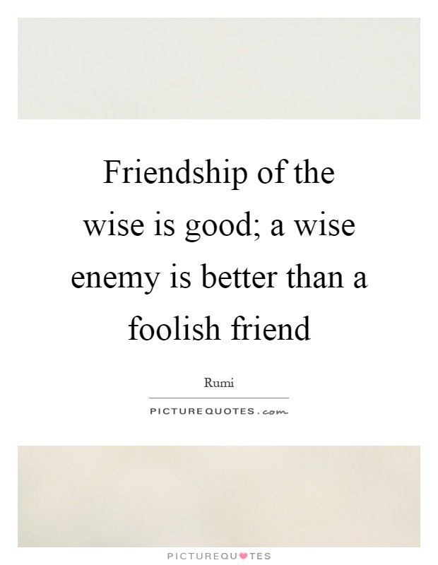 Friendship of the wise is good; a wise enemy is better than a foolish friend Picture Quote #1