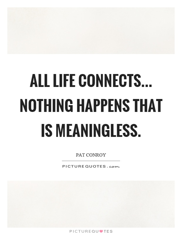 All life connects... Nothing happens that is meaningless Picture Quote #1