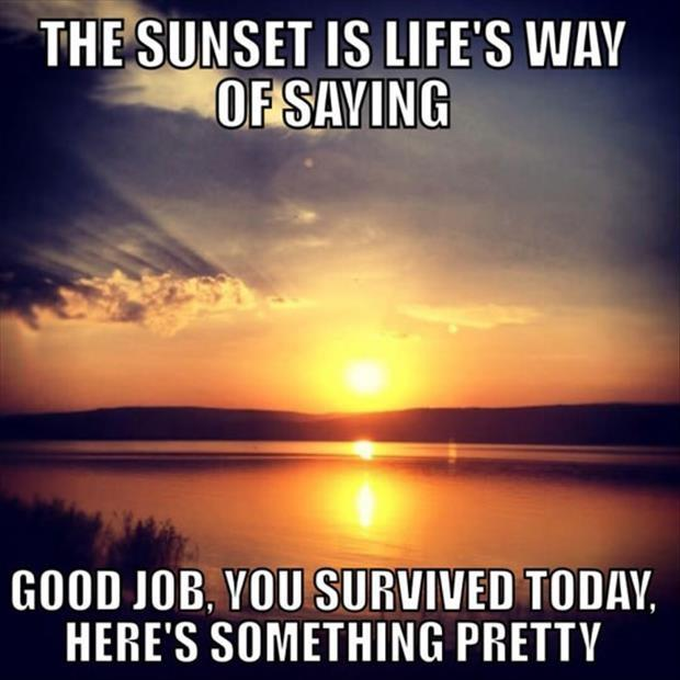 "The sunset is life's way of saying ""Good job, you survived today, here's something pretty"" Picture Quote #1"