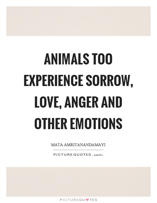 Animals too experience sorrow, love, anger and other emotions Picture Quote #1
