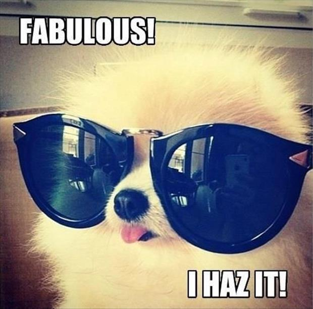 Fabulous! I haz it! Picture Quote #1