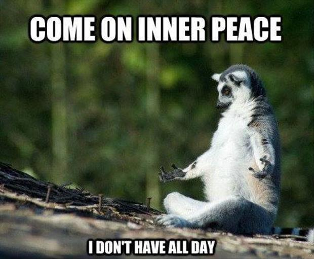 Come on inner peace. I don't have all day Picture Quote #1