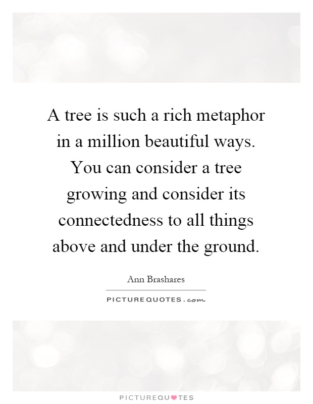 A tree is such a rich metaphor in a million beautiful ways. You can consider a tree growing and consider its connectedness to all things above and under the ground Picture Quote #1