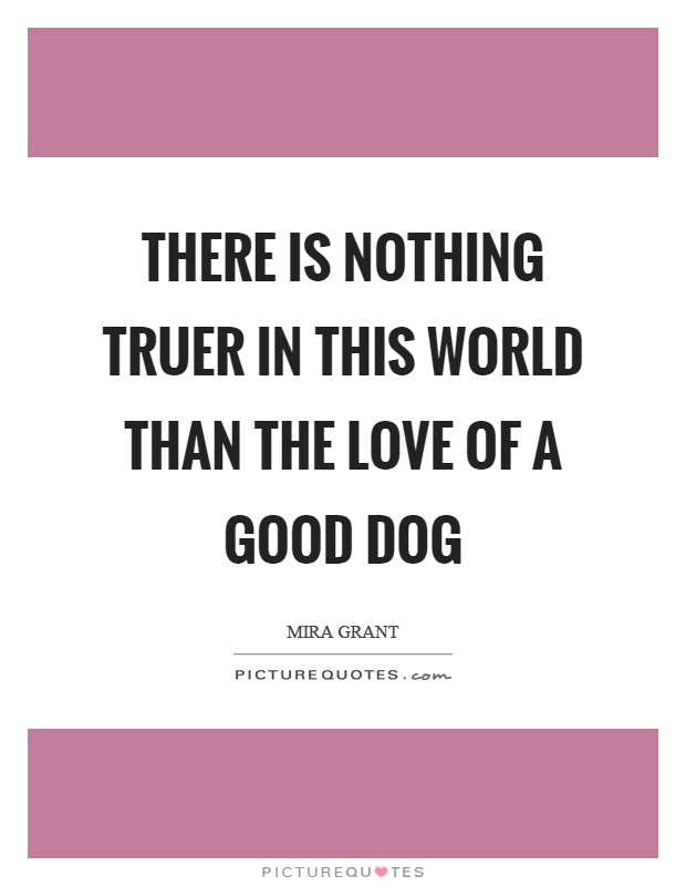 There is nothing truer in this world than the love of a good dog Picture Quote #1