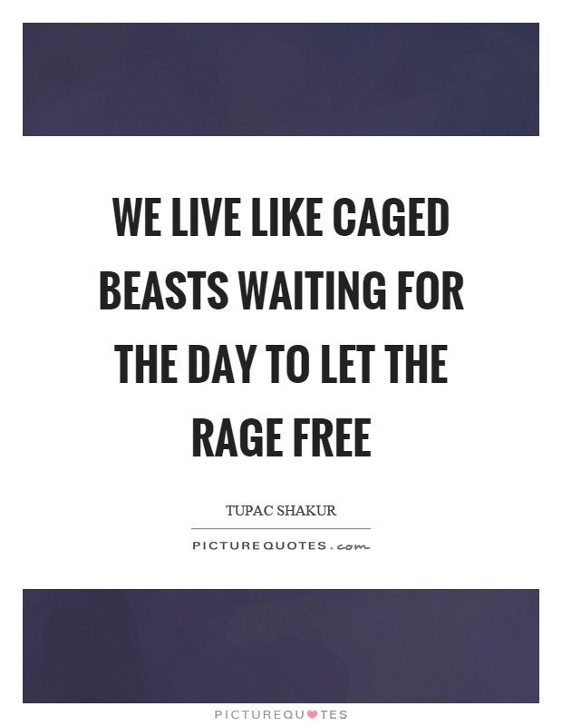 We live like caged beasts waiting for the day to let the rage free Picture Quote #1