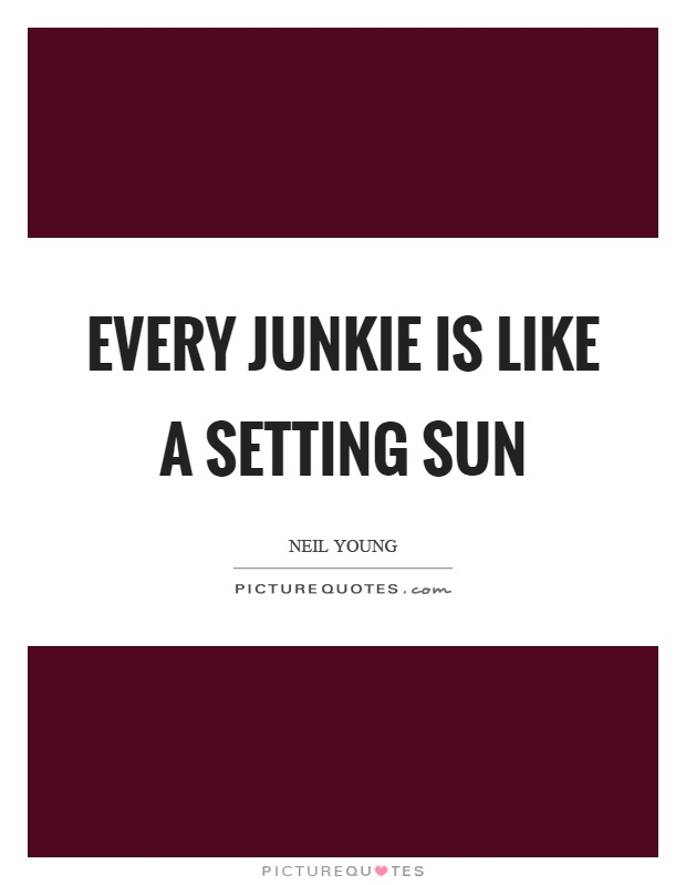 Every junkie is like a setting sun Picture Quote #1