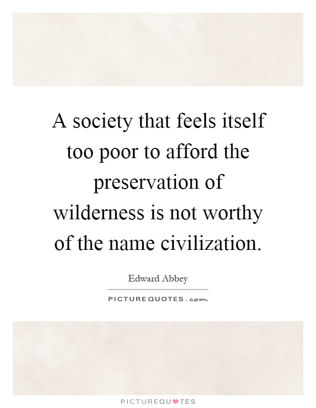 A society that feels itself too poor to afford the preservation of wilderness is not worthy of the name civilization Picture Quote #1