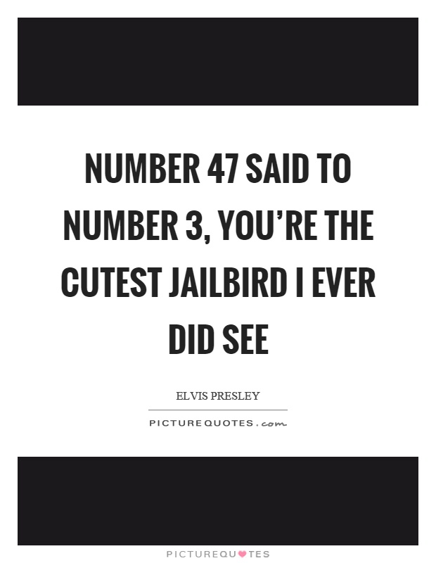 Number 47 Said To Number 3, You're The Cutest Jailbird I