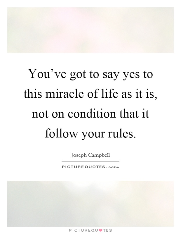 You've got to say yes to this miracle of life as it is, not on condition that it follow your rules Picture Quote #1