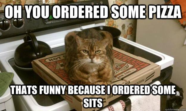Oh you ordered some pizza. That's funny because I ordered some sits Picture Quote #1