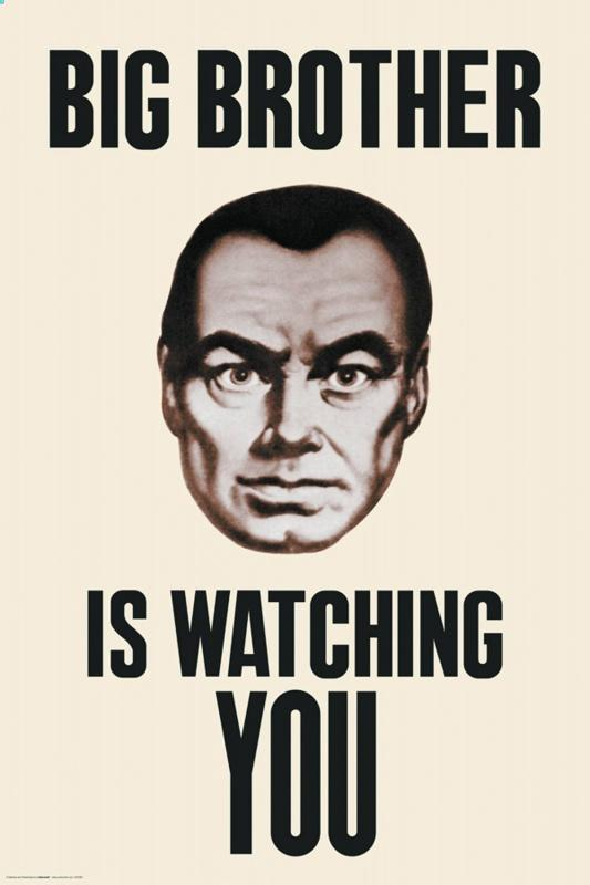 Big brother is watching you Picture Quote #1