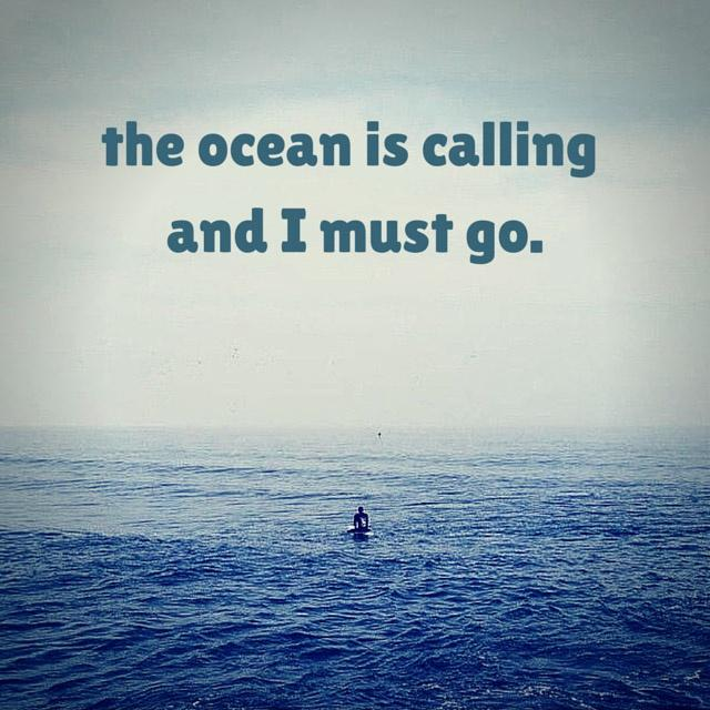 The ocean is calling and I must go Picture Quote #1