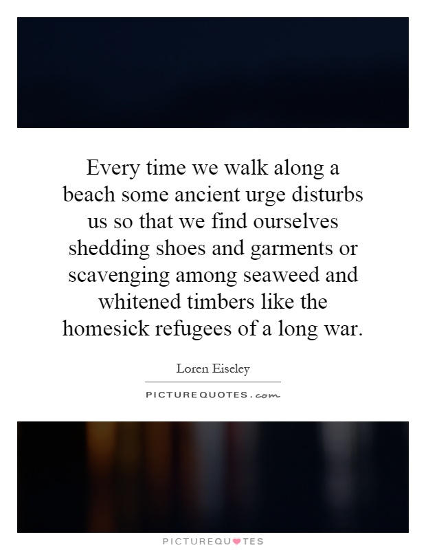 Every time we walk along a beach some ancient urge disturbs us so that we find ourselves shedding shoes and garments or scavenging among seaweed and whitened timbers like the homesick refugees of a long war Picture Quote #1