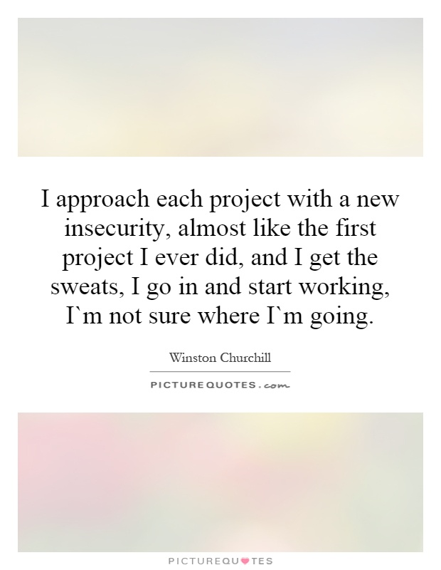 I approach each project with a new insecurity, almost like the first project I ever did, and I get the sweats, I go in and start working, I`m not sure where I`m going Picture Quote #1
