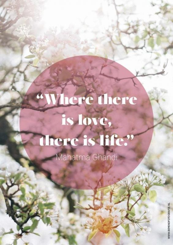 Where there is love there is life Picture Quote #1