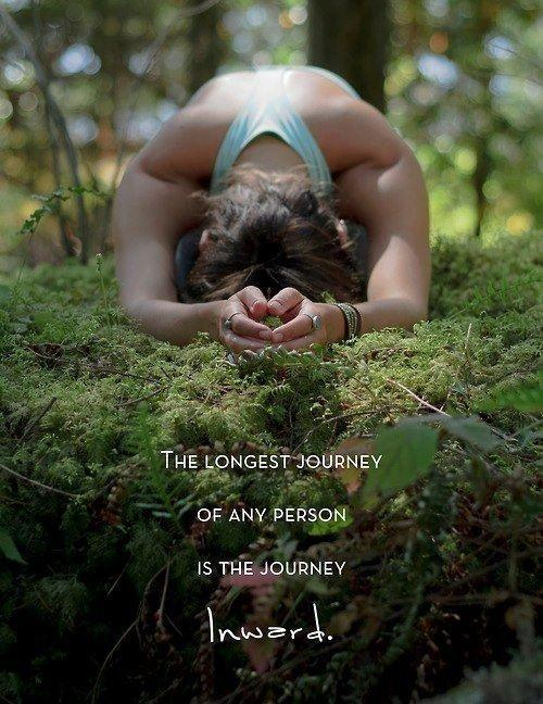 The longest journey of any person is the journey inward Picture Quote #1