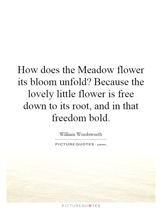 How does the Meadow flower its bloom unfold? Because the lovely little flower is free down to its root, and in that freedom bold Picture Quote #1