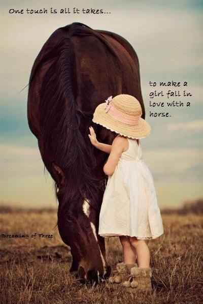 One touch is all it takes... to make a girl fall in love with a horse Picture Quote #1