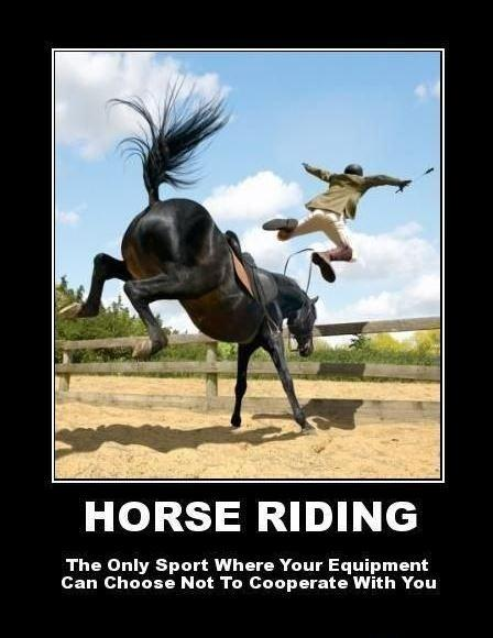 Horse riding. The only sport where your equipment can choose not to cooperate with you Picture Quote #1