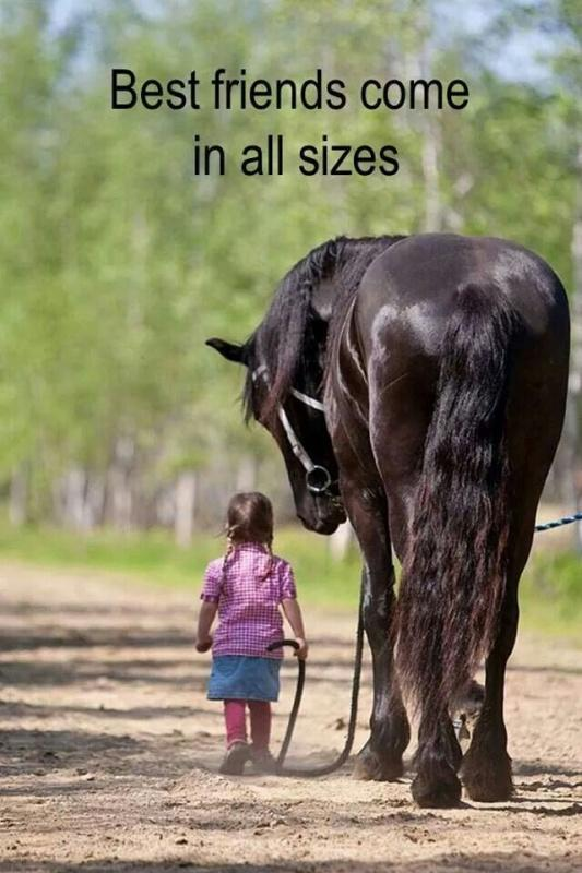 Best friends come in all sizes Picture Quote #1