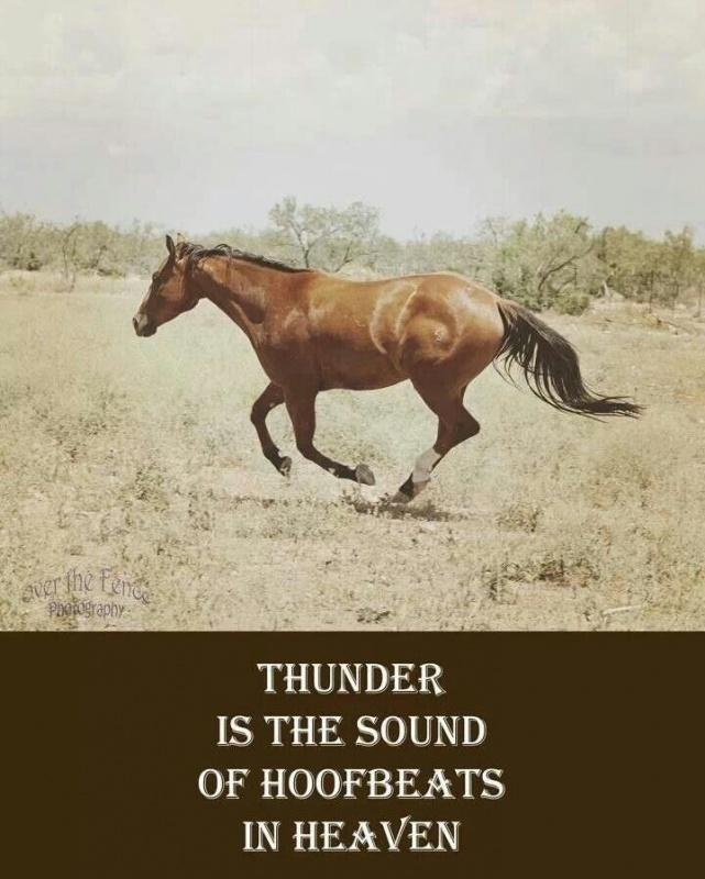 Thunder is the sound of hoofbeats in heaven Picture Quote #1