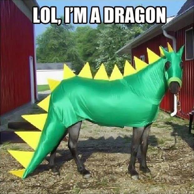 LOL, I'm a dragon Picture Quote #1
