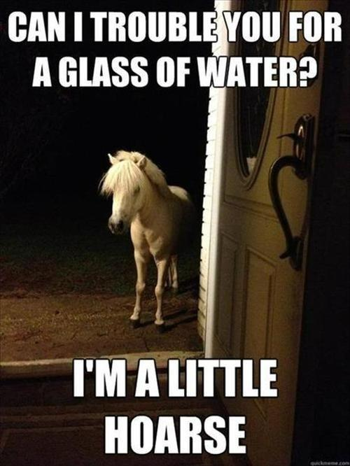 Can I trouble you for a glass of water? I'm a little hoarse Picture Quote #1