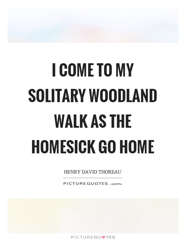 I come to my solitary woodland walk as the homesick go home Picture Quote #1