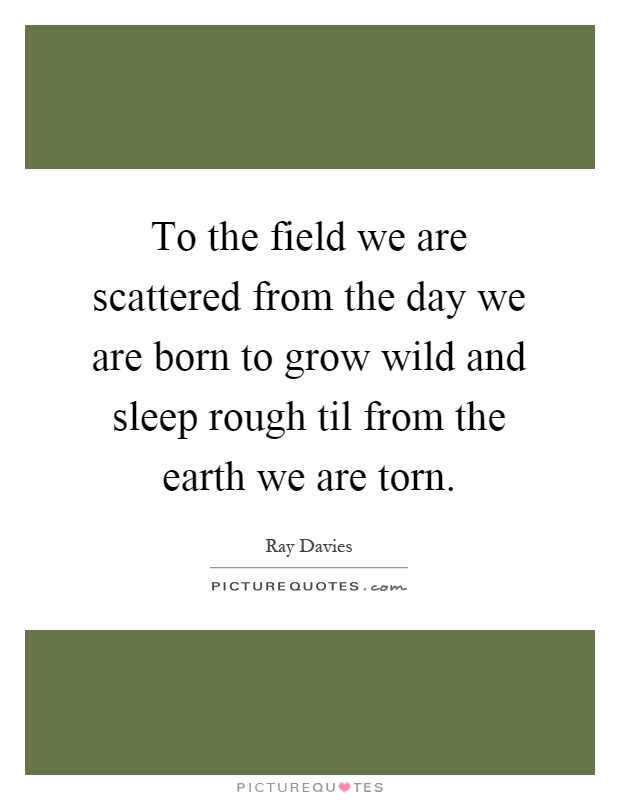 To the field we are scattered from the day we are born to grow wild and sleep rough til from the earth we are torn Picture Quote #1