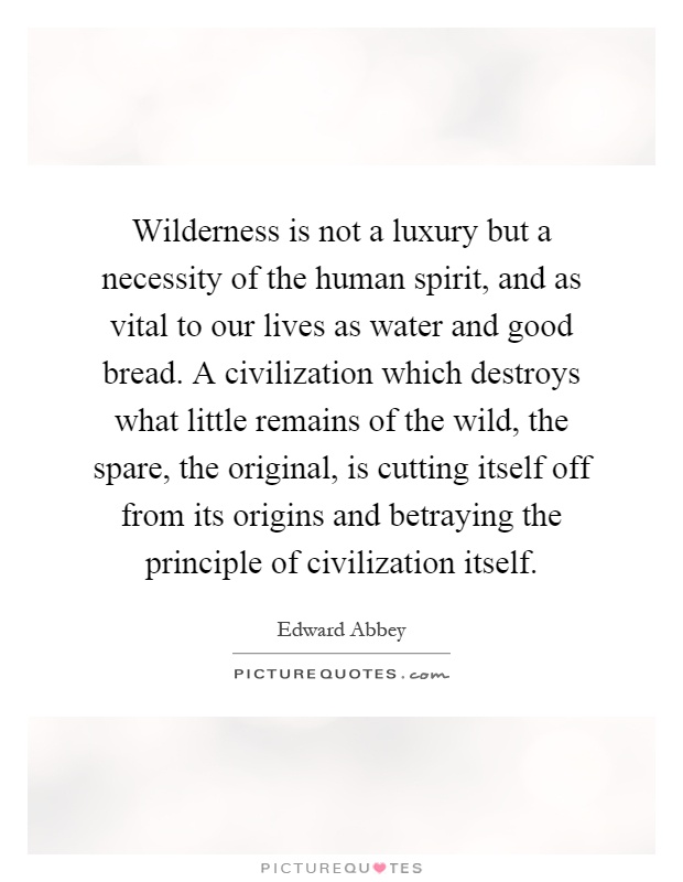 Wilderness is not a luxury but a necessity of the human spirit, and as vital to our lives as water and good bread. A civilization which destroys what little remains of the wild, the spare, the original, is cutting itself off from its origins and betraying the principle of civilization itself Picture Quote #1