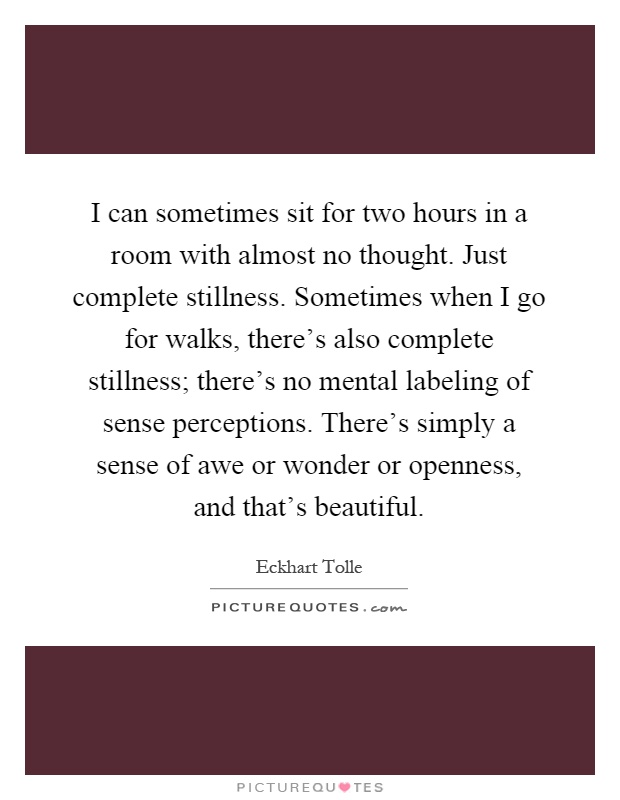 I can sometimes sit for two hours in a room with almost no thought. Just complete stillness. Sometimes when I go for walks, there's also complete stillness; there's no mental labeling of sense perceptions. There's simply a sense of awe or wonder or openness, and that's beautiful Picture Quote #1