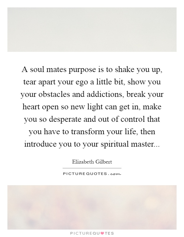 A soul mates purpose is to shake you up, tear apart your ego a little bit, show you your obstacles and addictions, break your heart open so new light can get in, make you so desperate and out of control that you have to transform your life, then introduce you to your spiritual master Picture Quote #1