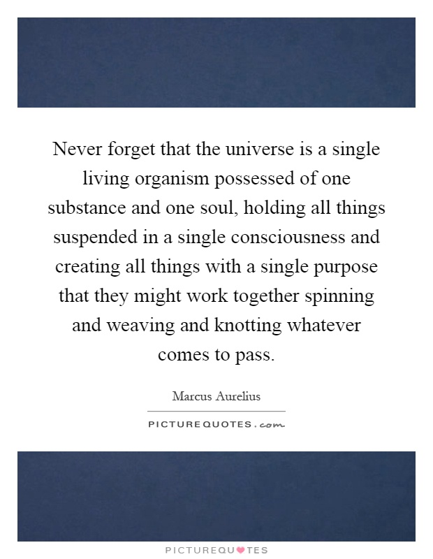 Never forget that the universe is a single living organism possessed of one substance and one soul, holding all things suspended in a single consciousness and creating all things with a single purpose that they might work together spinning and weaving and knotting whatever comes to pass Picture Quote #1