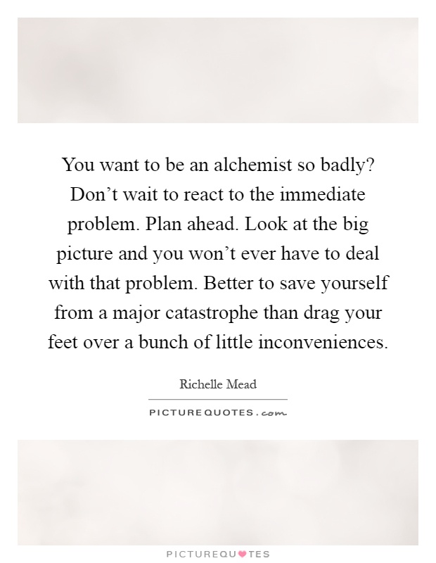 You want to be an alchemist so badly? Don't wait to react to the immediate problem. Plan ahead. Look at the big picture and you won't ever have to deal with that problem. Better to save yourself from a major catastrophe than drag your feet over a bunch of little inconveniences Picture Quote #1