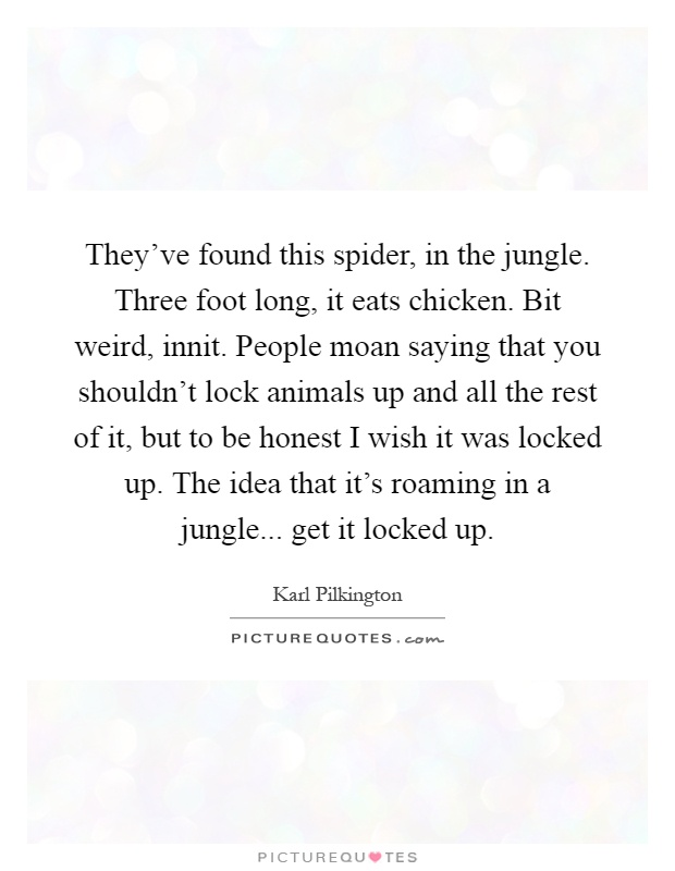 They've found this spider, in the jungle. Three foot long, it eats chicken. Bit weird, innit. People moan saying that you shouldn't lock animals up and all the rest of it, but to be honest I wish it was locked up. The idea that it's roaming in a jungle... get it locked up Picture Quote #1