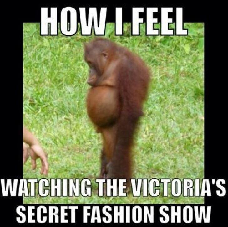 How I feel watching the Victoria's Secret fashion show Picture Quote #1