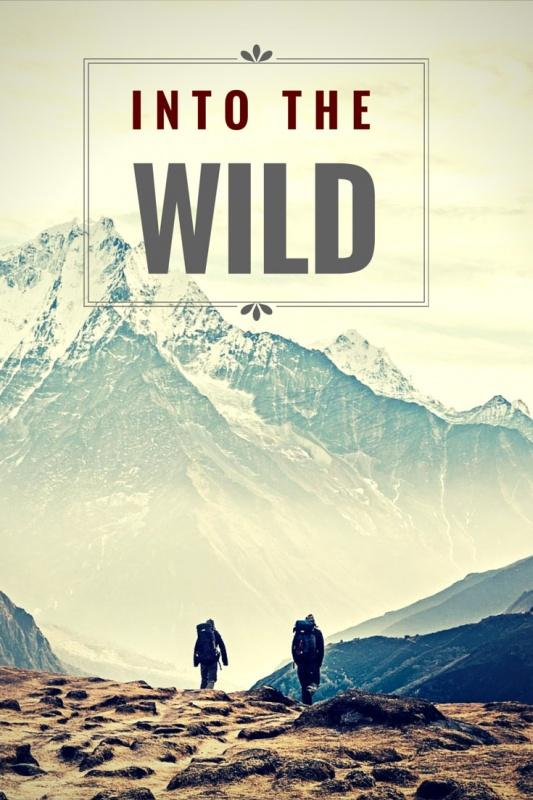 into the wild erwc Expository reading & writing curriculum (erwc) a task force of high school and csu faculty has developed the expository reading and writing course (erwc), a full-year college preparatory english course for high school seniors.
