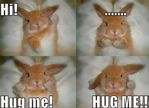 Hi! Hug me! Hug me! Picture Quote #1